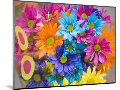 Colorful Bouquet of Flowers, Lincoln, Nebraska-Joel Sartore-Mounted Photographic Print