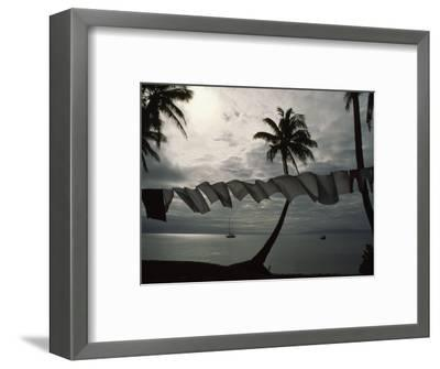 Buca Bay, Laundry and Palm Trees-James L^ Stanfield-Framed Photographic Print