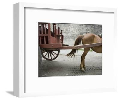 Horse Pulling a Cart in Jingzhou, China-David Evans-Framed Photographic Print