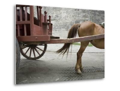 Horse Pulling a Cart in Jingzhou, China-David Evans-Metal Print