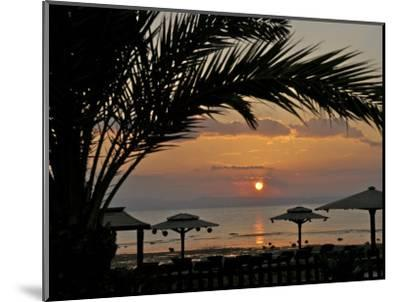 Dahab, Egypt, Middle East:Silhouette of Palm Tree over the Sunset-Brimberg & Coulson-Mounted Photographic Print