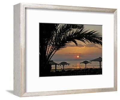 Dahab, Egypt, Middle East:Silhouette of Palm Tree over the Sunset-Brimberg & Coulson-Framed Photographic Print