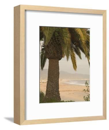 Palm Tree with Coastal Cityscape in Background, California-James Forte-Framed Photographic Print