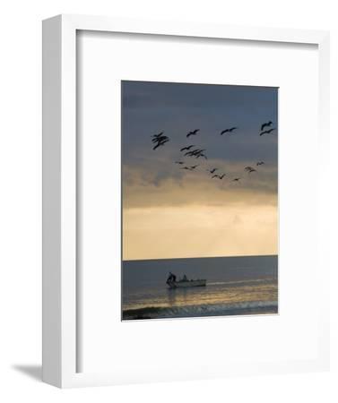 North Carolina Fishermen Cast Nets under Flock of Pelicans at Sunset-David Evans-Framed Photographic Print