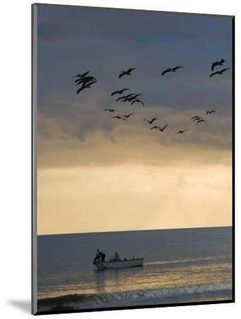 North Carolina Fishermen Cast Nets under Flock of Pelicans at Sunset-David Evans-Mounted Photographic Print