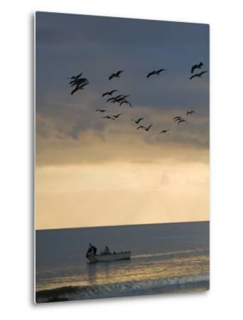 North Carolina Fishermen Cast Nets under Flock of Pelicans at Sunset-David Evans-Metal Print