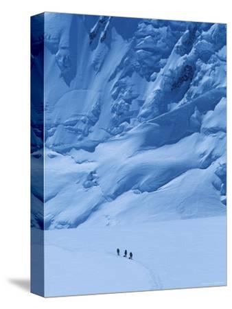 Three People Skiing Up the Kahiltna Glacier on Denali, Alaska-Bill Hatcher-Stretched Canvas Print