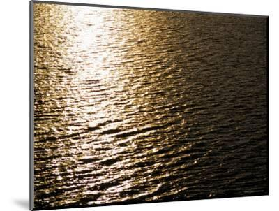 The Sun Reflects Off Rippling Water, Alaska-Stacy Gold-Mounted Photographic Print