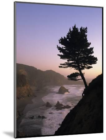 Scenic View of the Oregon Coast at Twilight-Phil Schermeister-Mounted Photographic Print
