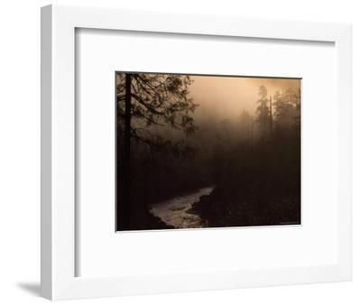 South Fork of Smith River at Sunrise, California-Phil Schermeister-Framed Photographic Print