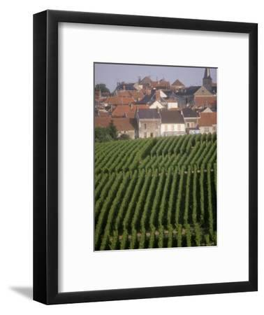 Vineyards in the Champagne Region, France-Michael S^ Lewis-Framed Photographic Print