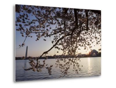 Washington Monument and Jefferson Memorial with Cherry Blossom Trees, Washington, D.C.-Kenneth Garrett-Metal Print
