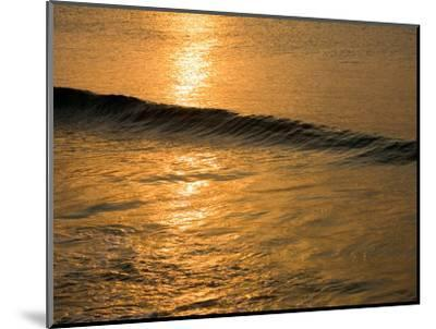 Waves Break at Sunset Along the Waterfront, Cozumel, Mexico-Michael S^ Lewis-Mounted Photographic Print