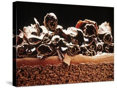 Sponge Cake with Chocolate Cream--Stretched Canvas Print