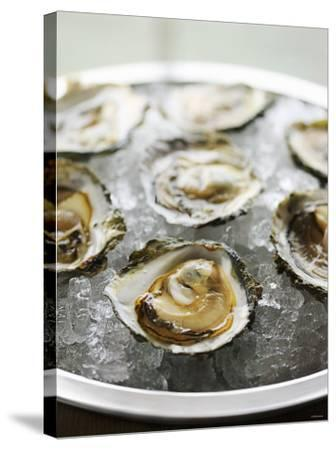Oysters on Ice-Matilda Lindeblad-Stretched Canvas Print