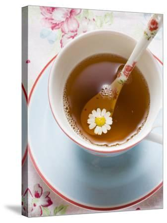 Chamomile Tea in Cup with Spoon--Stretched Canvas Print