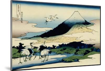 36 Views of Mount Fuji, no. 14: Umegawa in Sagami Province-Katsushika Hokusai-Mounted Giclee Print