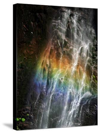 Rainbow and Water Falls--Stretched Canvas Print
