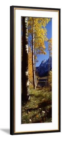 Silver Lake, Mono County, California, USA--Framed Photographic Print