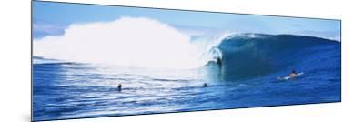 Three People Bodyboarding in the Ocean, Tahiti, French Polynesia--Mounted Photographic Print