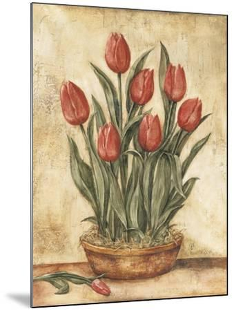 Potted Tulips-Tina Chaden-Mounted Art Print