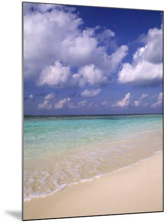 Tropical Beach at Maldives, Indian Ocean-Jon Arnold-Mounted Photographic Print