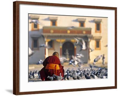 Gandan Khiid Monastery, Ulaan Baatar, Mongolia-Peter Adams-Framed Photographic Print