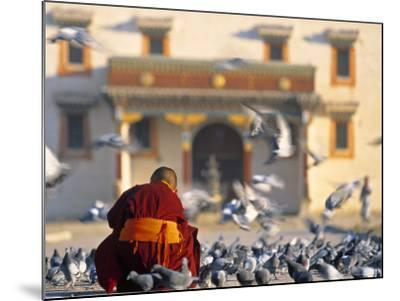 Gandan Khiid Monastery, Ulaan Baatar, Mongolia-Peter Adams-Mounted Photographic Print