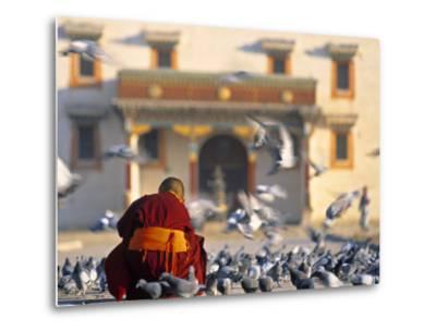 Gandan Khiid Monastery, Ulaan Baatar, Mongolia-Peter Adams-Metal Print