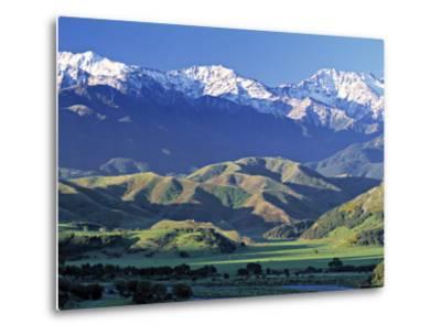 Kaikoura Range, South Island, New Zealand-Doug Pearson-Metal Print