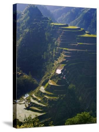 Rice Terraces of Banaue, Luzon Island, Philippines-Michele Falzone-Stretched Canvas Print