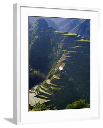 Rice Terraces of Banaue, Luzon Island, Philippines-Michele Falzone-Framed Photographic Print