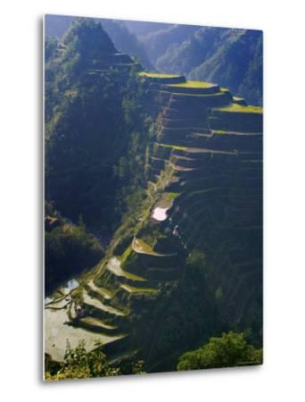 Rice Terraces of Banaue, Luzon Island, Philippines-Michele Falzone-Metal Print