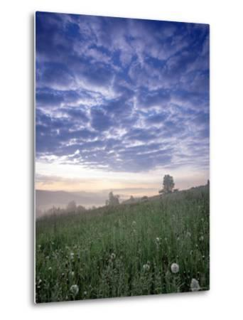 Tatra Mountains, Poland-Peter Adams-Metal Print