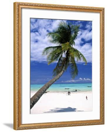 Palm Tree and Beach, Zanzibar, Tanzania-Peter Adams-Framed Photographic Print