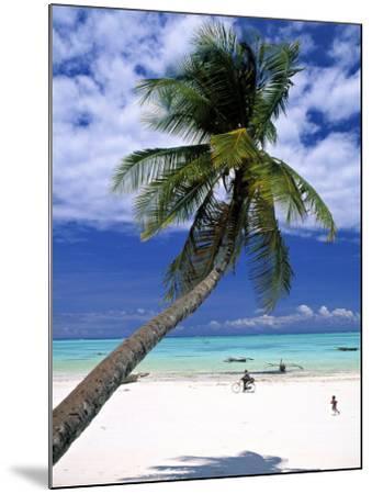 Palm Tree and Beach, Zanzibar, Tanzania-Peter Adams-Mounted Photographic Print