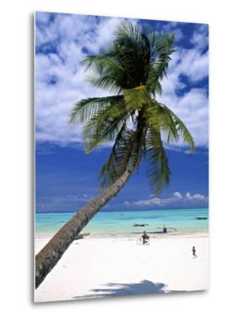 Palm Tree and Beach, Zanzibar, Tanzania-Peter Adams-Metal Print