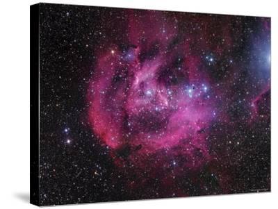 IC 2944 Running Chicken Nebula-Stocktrek Images-Stretched Canvas Print