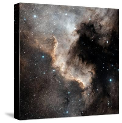 North American Nebula-Stocktrek Images-Stretched Canvas Print