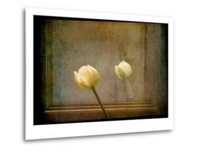White Tulip against Framed Mirror-Mia Friedrich-Metal Print