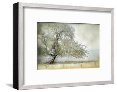 Tree in Field of Flowers-Mia Friedrich-Framed Premium Photographic Print