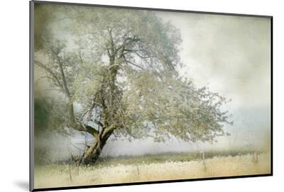 Tree in Field of Flowers-Mia Friedrich-Mounted Premium Photographic Print