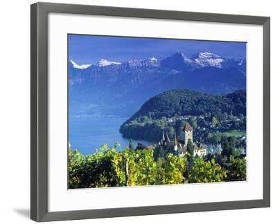 Spiez, Lake Thun, Switzerland-Peter Adams-Framed Photographic Print