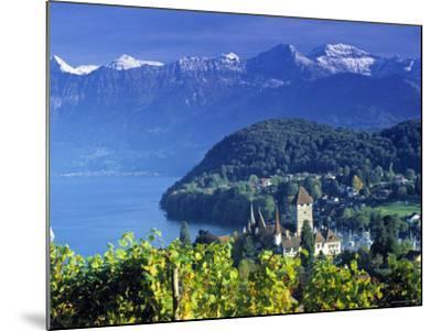 Spiez, Lake Thun, Switzerland-Peter Adams-Mounted Photographic Print