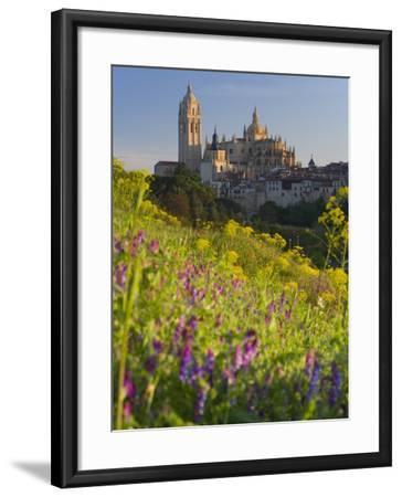 Segovia, Castilla Y Leon, Spain-Peter Adams-Framed Photographic Print