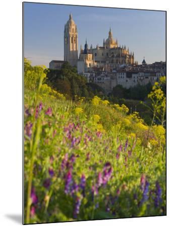Segovia, Castilla Y Leon, Spain-Peter Adams-Mounted Photographic Print