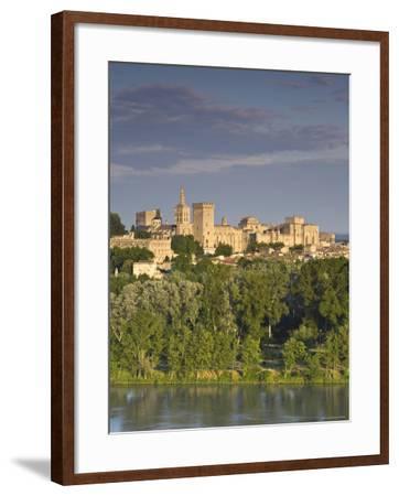 Palais Des Papes, Avignon, Provence, France-Doug Pearson-Framed Photographic Print