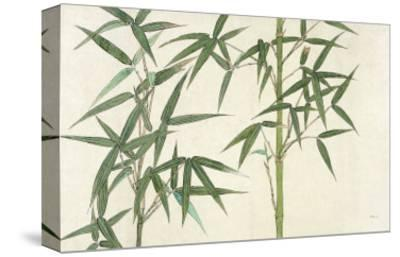 Bamboo--Stretched Canvas Print