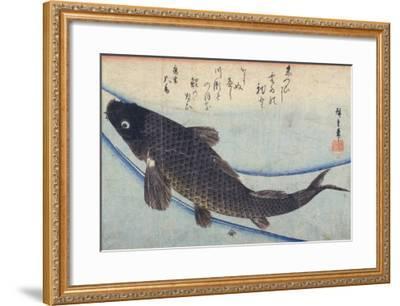Print of Carp in a Stream-Ando Hiroshige-Framed Giclee Print