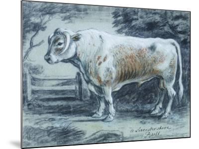 Leicestershire Bull, 18th Century-Copleston Warre Bampfylde-Mounted Giclee Print